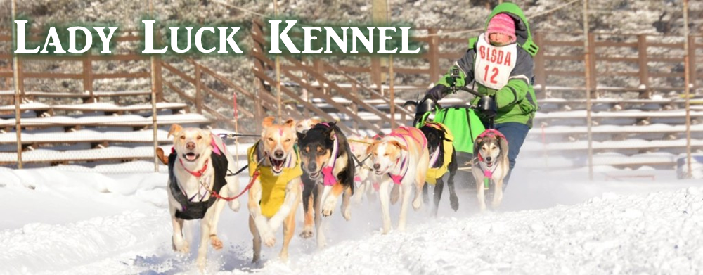 Lady Luck Kennel